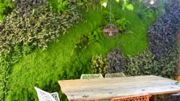 Jardins verticals